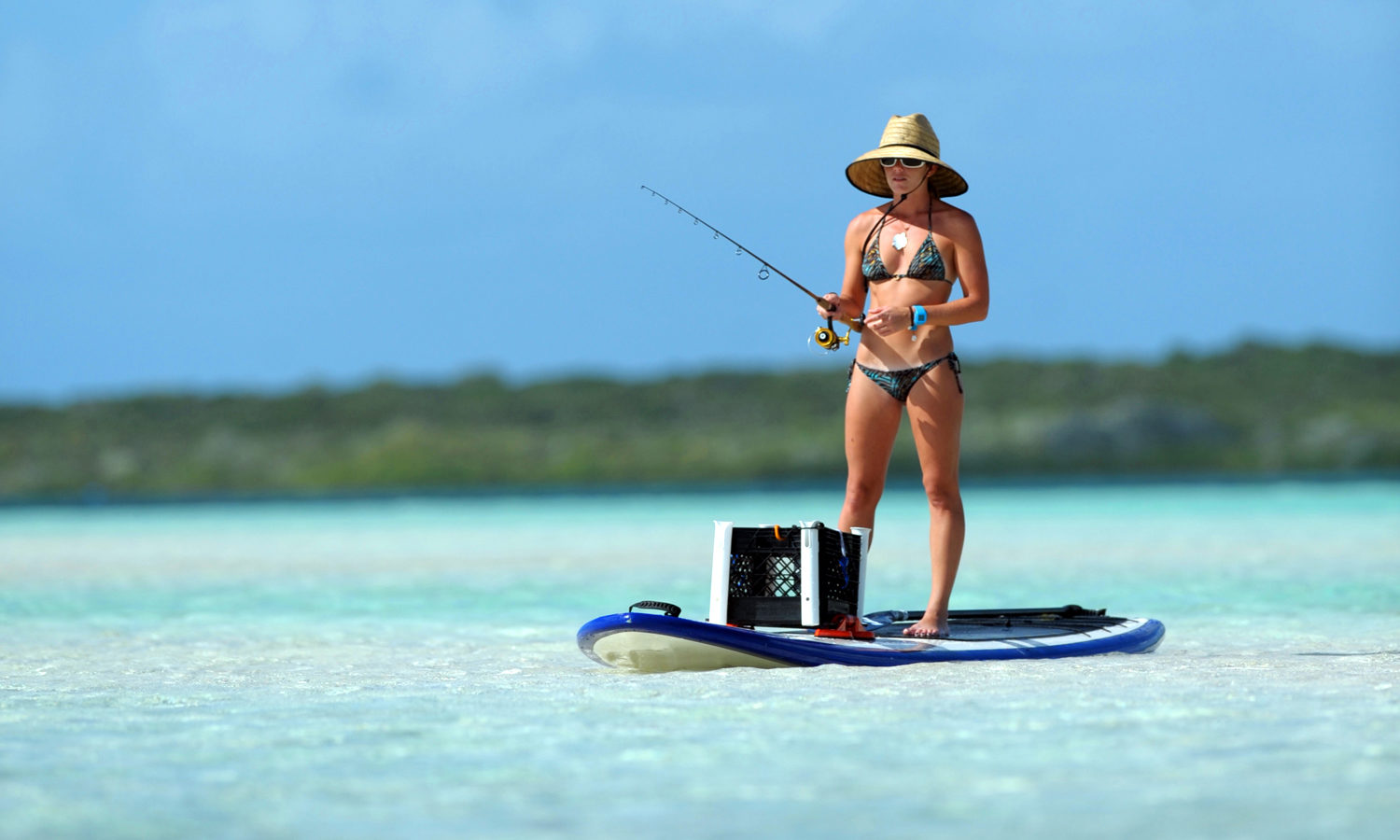 Fishing In The Bahamas: A Helpful Guide